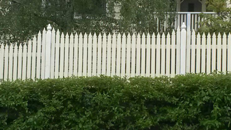 Picket fence windsor