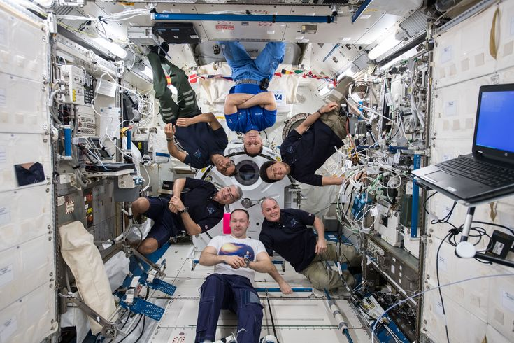 Portrait of the Expedition 54 Crew on the Space Station