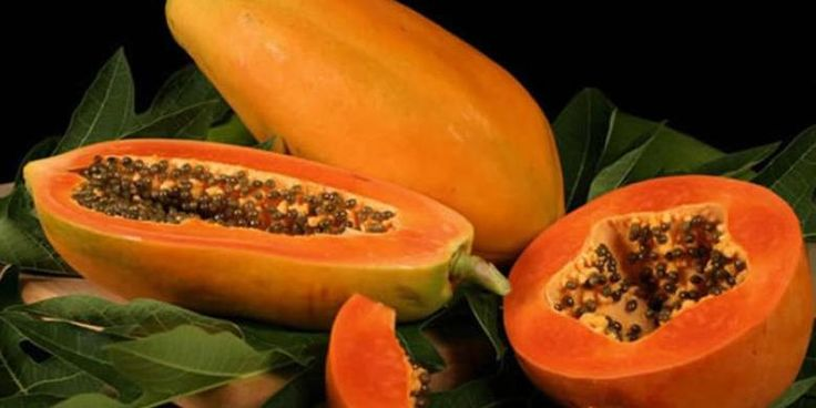 If you eat papaya, don't dispose the seeds starting from now! The benefits of papaya are not only obtained the meat, but also the seeds...