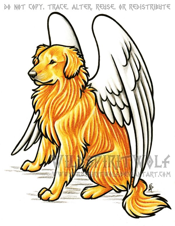 Kaizen Golden Retriever Dog Memorial by WildSpiritWolf on deviantART
