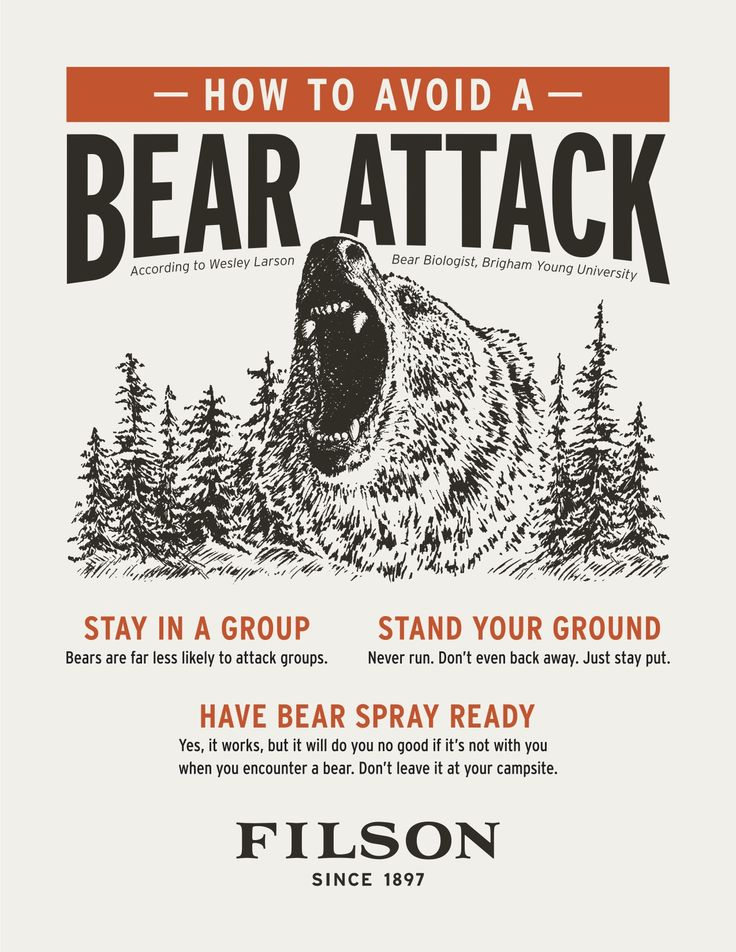 Stay prepared in the wild with Wesley Larson's Guide to Safety in Bear Country…