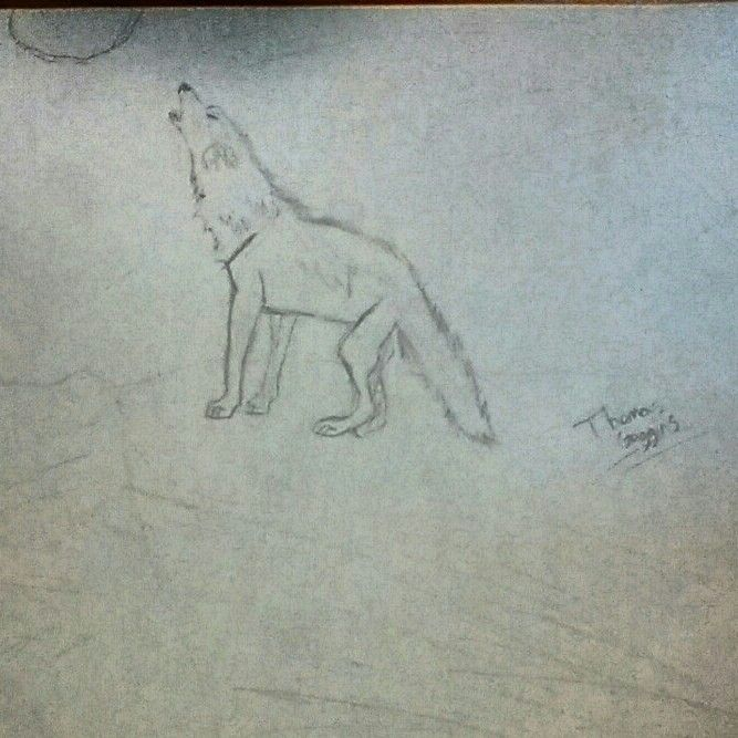 I love wolves and drawing them