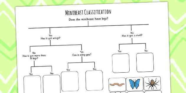Minibeast Classification Game