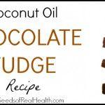 Coconut Oil Chocolate Fudge Recipe