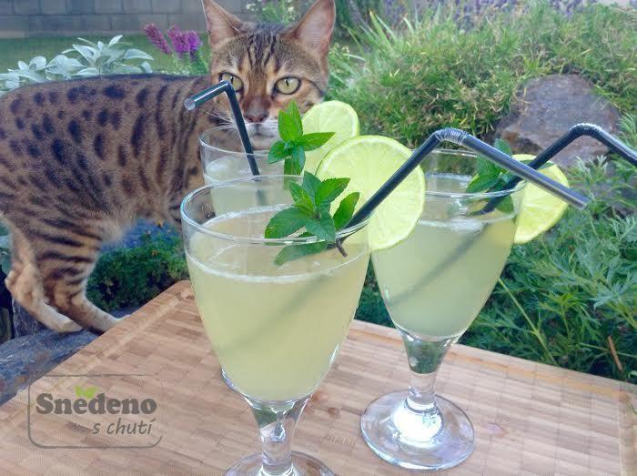 Zázvorová limonáda z domácího zázvorového sirupu