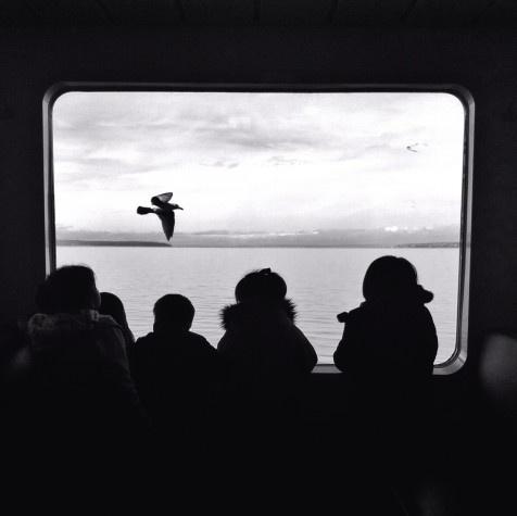 fantastic shot of #kids on a #ferry taken by @bradpuet in #Seattle
