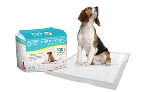 Groupon - 100ct Puppy Pads in [missing {{location}} value]. Groupon deal price: $17.99