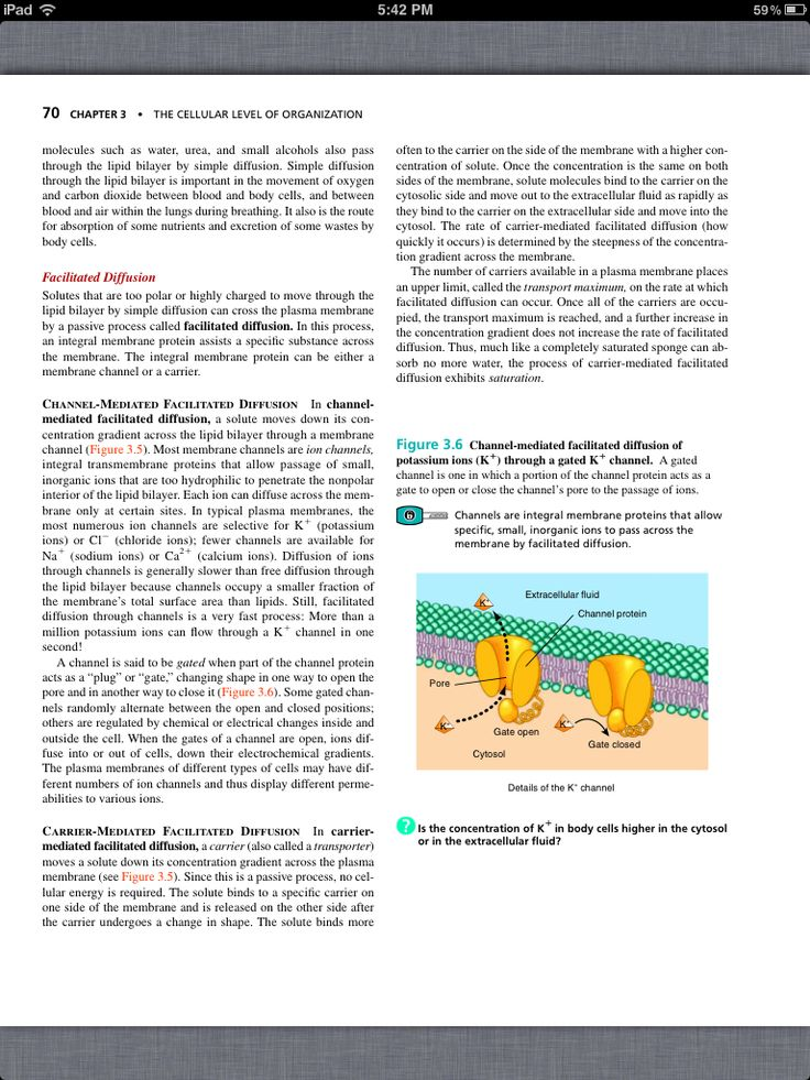 51 best Chapter 3, The Cellular Level of Organization images on ...
