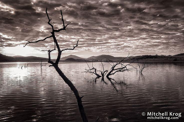 Pilanesberg Mankwe Dam Infrared by Mitchell Krog on 500px