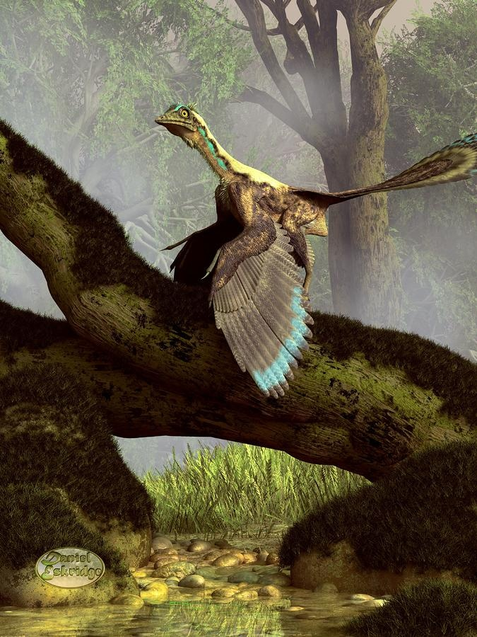 Title: The Last Dinosaur Artist: Daniel Eskridge Medium: Digital Art - Digital Description: Archaeopteryx is a creature that seems to be half bird, half dinosaur. He is featured in this latest of my paleo art series. It lived in the Late Jurassic Period around 150 million years ago and it seems to represent the transition from dinosaur to bird. As a result I've called this image The Last Dinosaur.:
