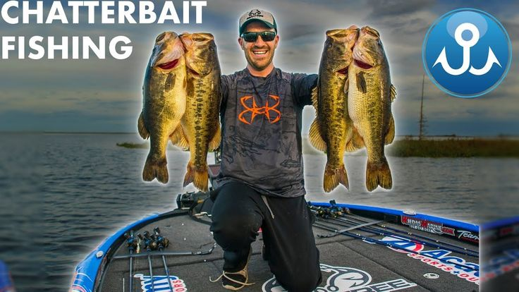 Chatterbait streaming