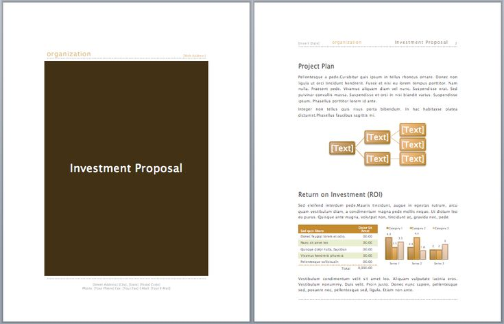 Investment Proposal Samples