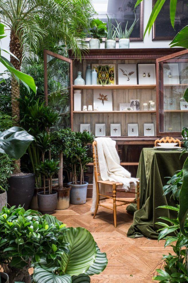 Cómo Armar Un Jardín En Departamento Con O Sin Terraza
