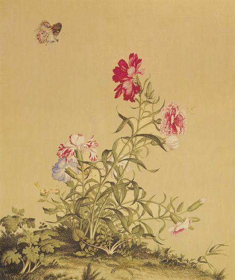 《仙萼长春图》之七  清 郎世宁 绢本设色 纵33.3厘米 27.8厘米 台北故宫博物院藏      郎世宁擅长人物、肖像、花卉、鸟兽以及历史题材的绘画,以中西画法并用而独具一格。