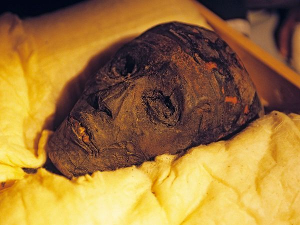 Photo: Mummy of King Tut : the curse of the mummies - National Geographic
