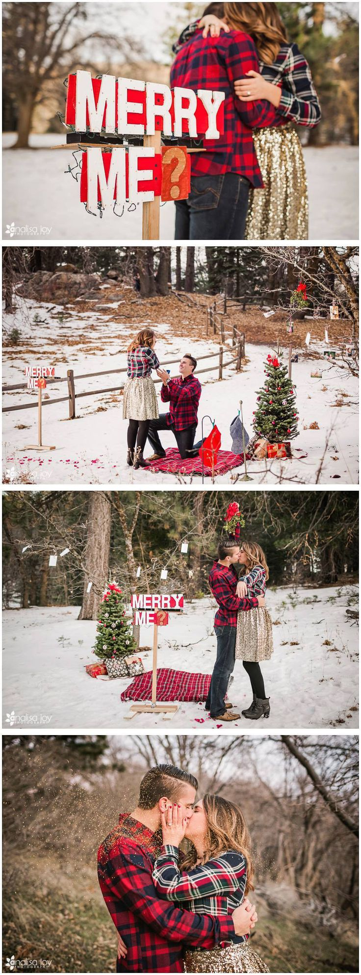 Surprise proposal full of snowy Christmas cheer, perfectly planned and captured by wedding photographer Analisa Joy Photography {Facebook: The Wedding Scoop}