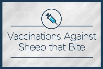 11 Vaccinations Against Sheep that Bite