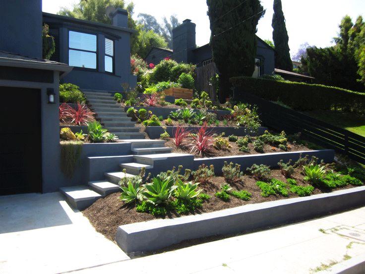 front yard succulent landscaping Landscape Succulent Drought