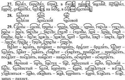 ГДЗ русский язык 5 класс Ладыженская Т.А.