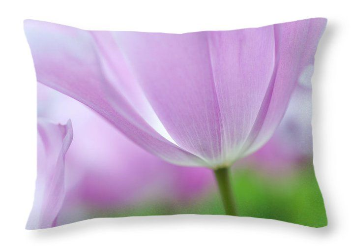 Tulip Throw Pillow featuring the photograph Airy Purple. Tulips Of Keukenhof by Jenny Rainbow