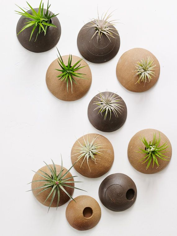 Customized Set of Wall Planters MADE TO ORDER.  Wall Planters Unglazed for Air Plants in Chocolate and Hazelnut Clay Bodies.                                                                                                                                                      More