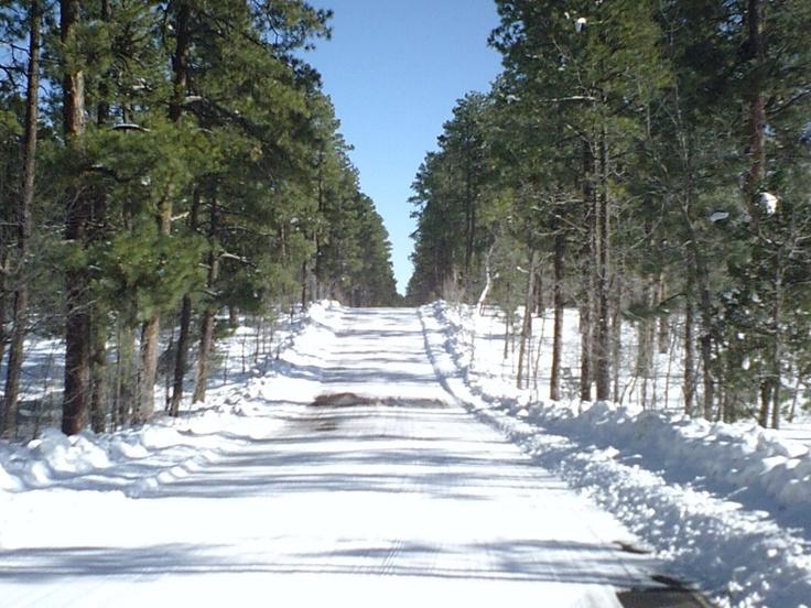 Snow Road Pinetop Arizona Pinetop Arizona