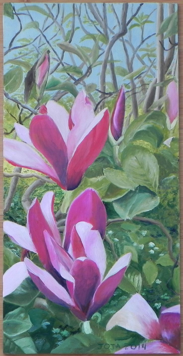 Magnolia (2014) olieverf