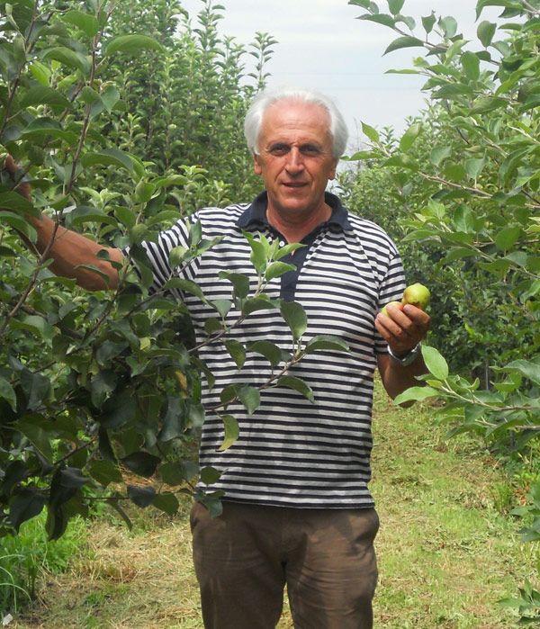 For Mauri's Dad. Maioli Frutti Antichi