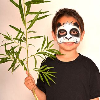 Panda - AnimalsFace Paint Ideas - How to Face Paint | Snazaroo
