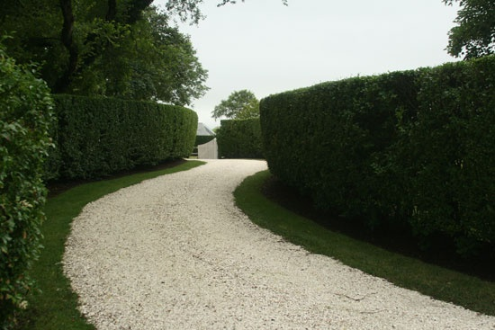Hedge Driveway From Kathryn Aalto Design Stone Driveway