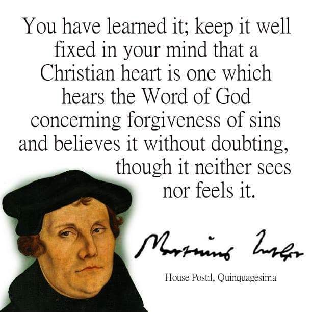 Martin Luther Quotes Unique 207 Best Martin Luther Quotes Images On Pinterest  Martin Luther