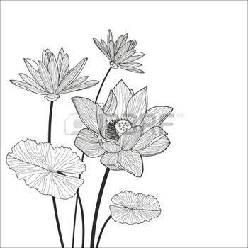 1000 Id Es Sur Le Th Me Tatouage De Lotus Blanc Sur Pinterest Tatouages De Lotus Tatouages Et