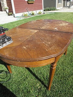 that looks a lot like my dining room table, except I like to keep my table inside and off the lawn.