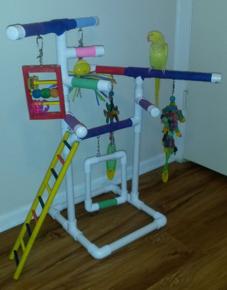 Rainbow Tabletop and Floor Pvc Bird Play Gym Stand With Swing And Ladder