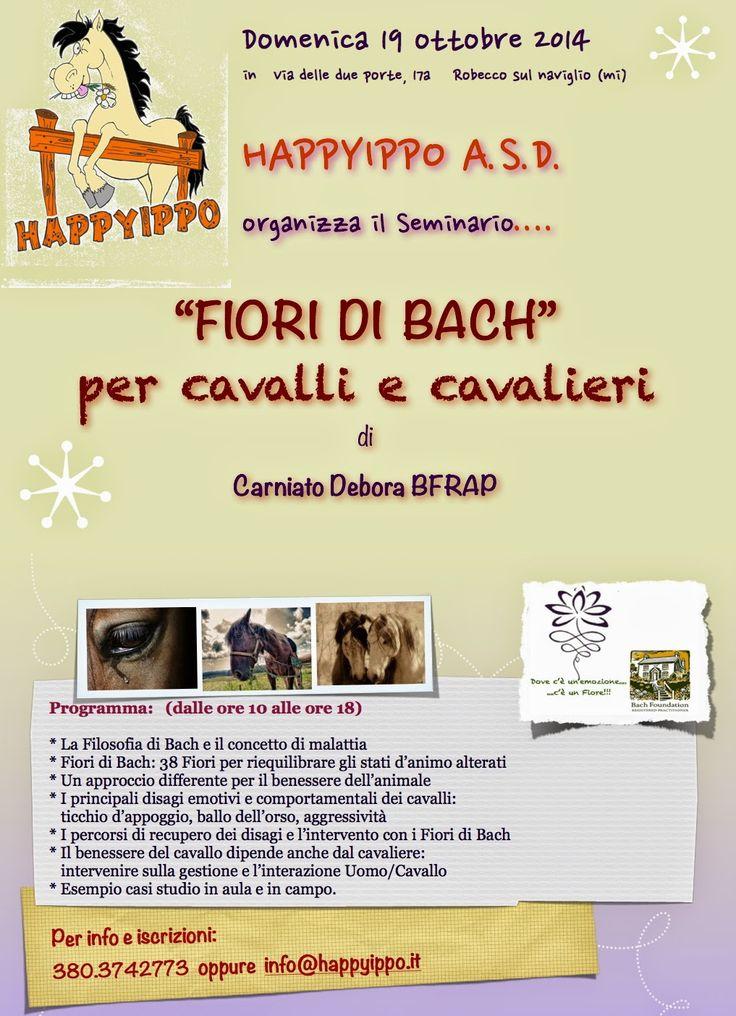Almalotus ........ di Debora Carniato BFRAP   Consulente in Fiori di Bach per Animali: SEMINARIO:  FIORI DI BACH….PER CAVALLI E CAVALIERI...