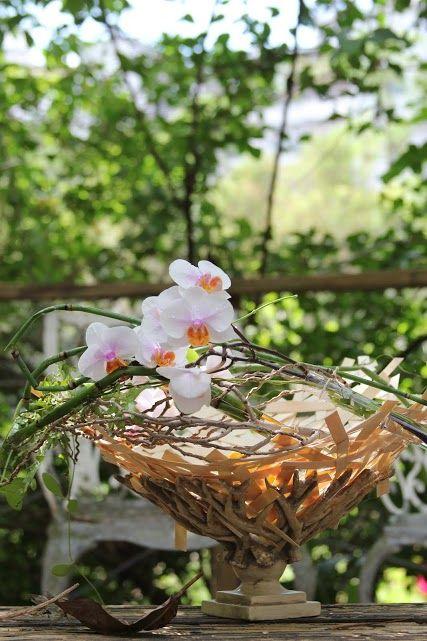 little wood basket #wood #basket #orchids #flowers #workshop #timobolte #taipei #design