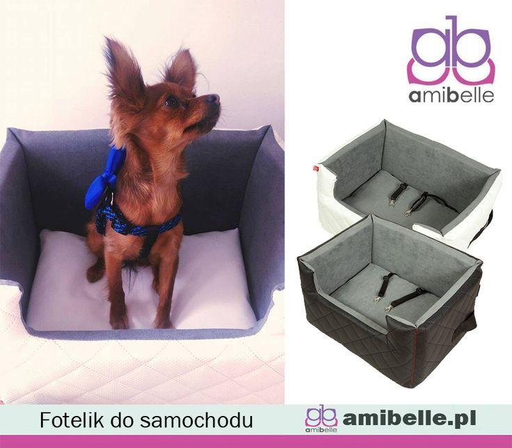 W czasie jazdy samochodem bezpieczeństwo Twoje i Twojego psa to dwie najważniejsze rzeczy. W naszym foteliku pieskowi będzie wygodnie a Ty będziesz spokojna w czasie podróży. Dodatkowo fotelik ochroni tapicerkę Twojego auta przez zadrapaniami, piaskiem i sierścią. www.amibelle.pl#fotelikdosamochodu #transporter #dlazwierząt #ubrankadlapsów