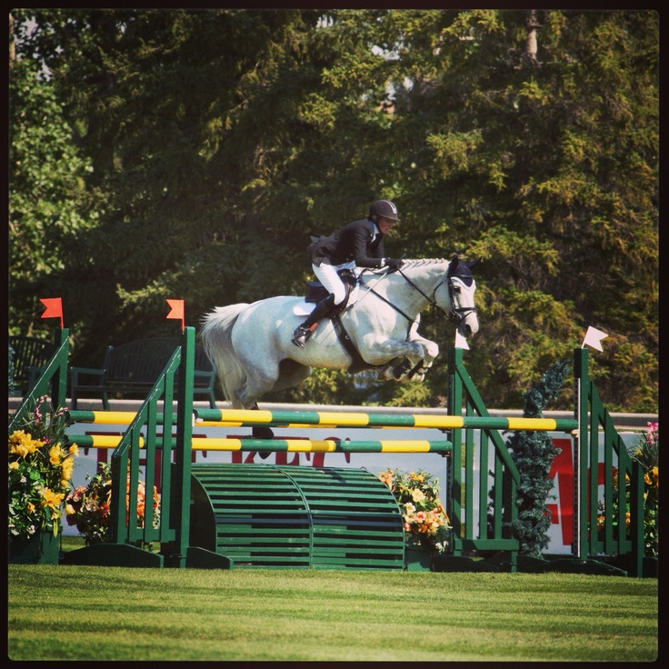 Show jumping @ spruce meadows masters