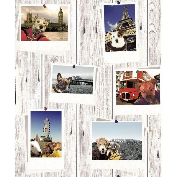 Muriva Selfie Dogs 10.05m x 53cm Matte Wallpaper Roll Multi