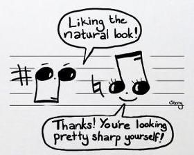 Music nerd humor--I am so grateful to have taken all those years of piano lessons, IF ONLY so that I can get these awesome jokes! xD