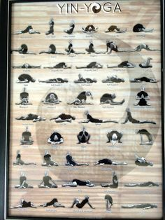 yin yoga sequences - Google Search