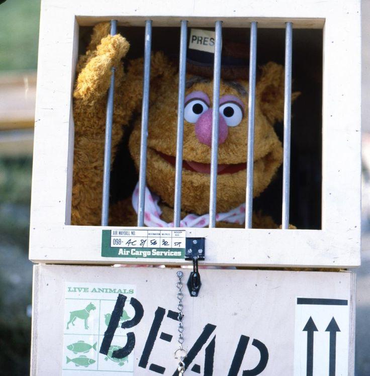 17 Best Images About Kermit Miss Piggy On Pinterest: 17 Best Images About *Muppet* *Madness* On Pinterest