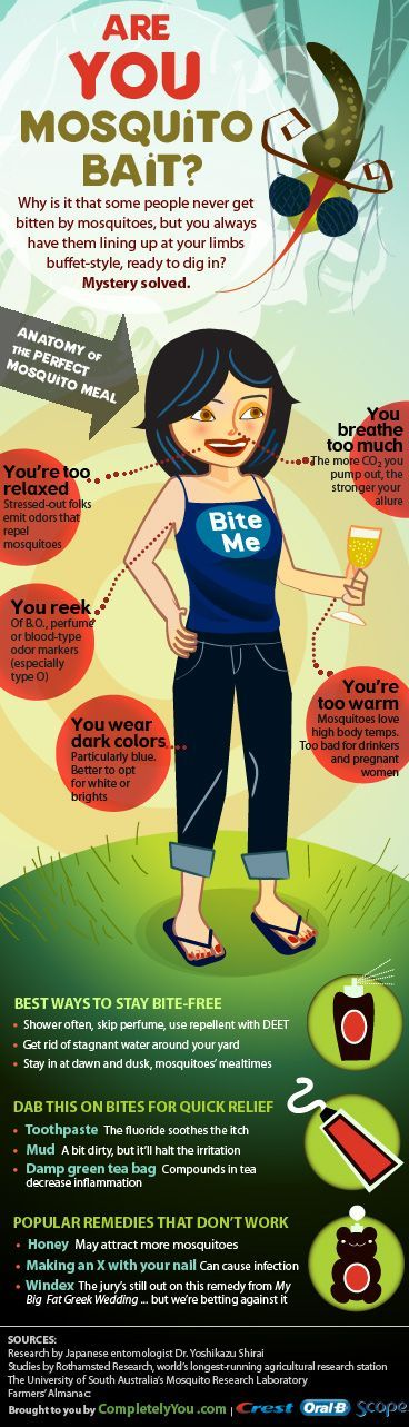 Infographics - Are You Mosquito Bait?