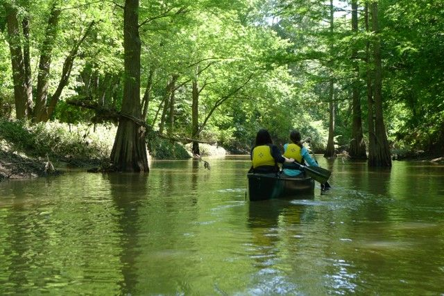 Z. CLIFT/ARKANSAS DEPARTMENT OF PARKS AND TOURISM