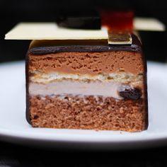Шоколадный торт с вишнёвой панакоттой