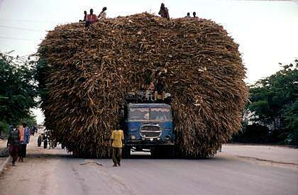 Africa   A truck transports stubbles of corn for animals in Mogadishu.   © Pascal Maitre