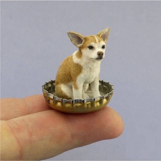 The Nicest Miniature Chihuahua Ever Out Of Beesputty Clay Paint