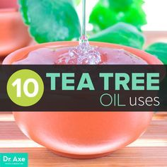 Top 10 Tea Tree Oil Uses and Benefits - Dr. Axe Another one of my essential essential oils!