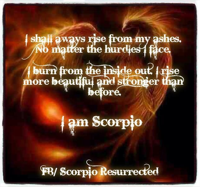 Scorpio's phoenix Scorpio is the 8th house of the zodiac also known as the house of transformation. Ruled by the mighty Pluto. Through a Scorpio's life they evolve and change. Rising to a higher form. It is in the Scorpio's darkest hours when they fall to rock bottom the phoenix burns deep within. Destroying themselves to ash. After they rise from their ashes a different stronger scorpio is created. From which we destroy we create. Scorpios are meant to survive no matter the hurdles they…