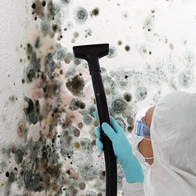 Using a few natural ingredients and this guide, you can learn how to remove black mold before it puts your home and health at risk.